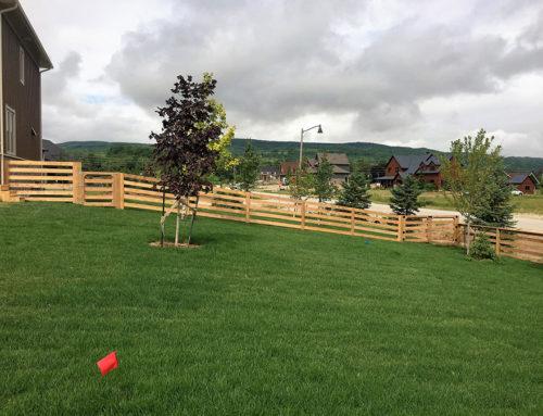Fences 12